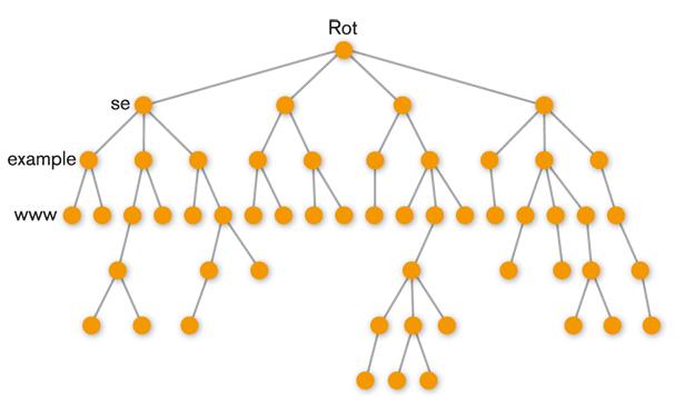 Figur 1. Trädstrukturen i DNS.