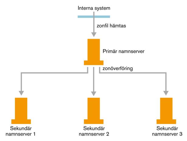 Figur 4. Zonöverföring till primära och sekundära namnservrar.
