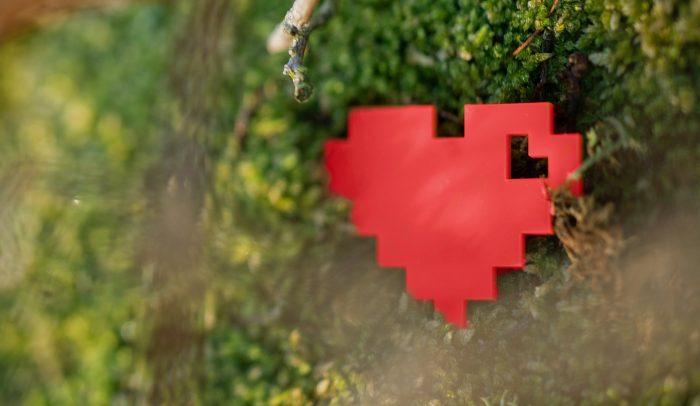 internetstiftelsens hjärta i mossa
