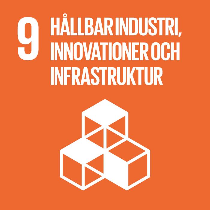FN:s globala mål 9: Hållbar industri, innovationer och infrastruktur