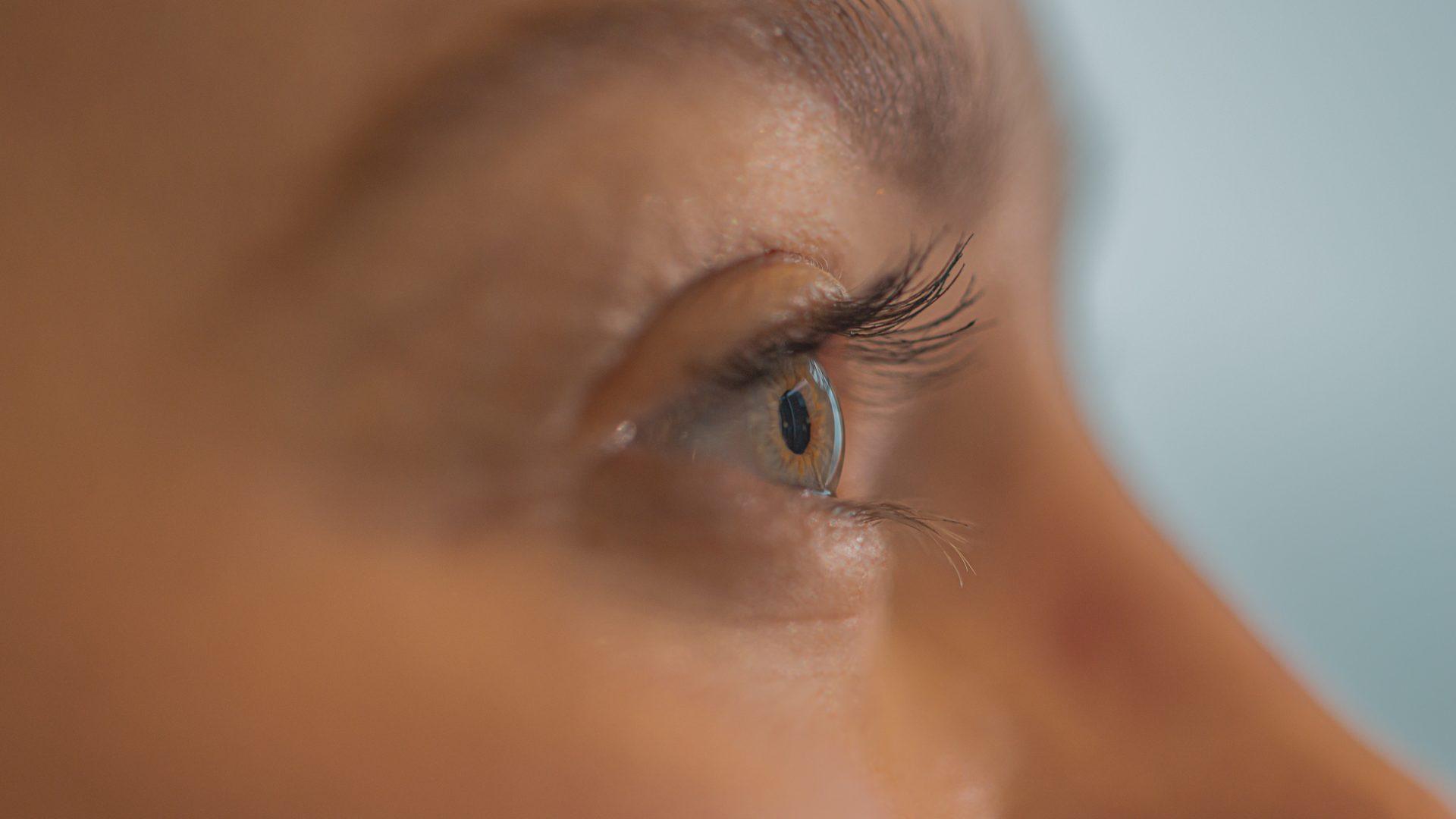 Ett öga i profil med ögonfransar